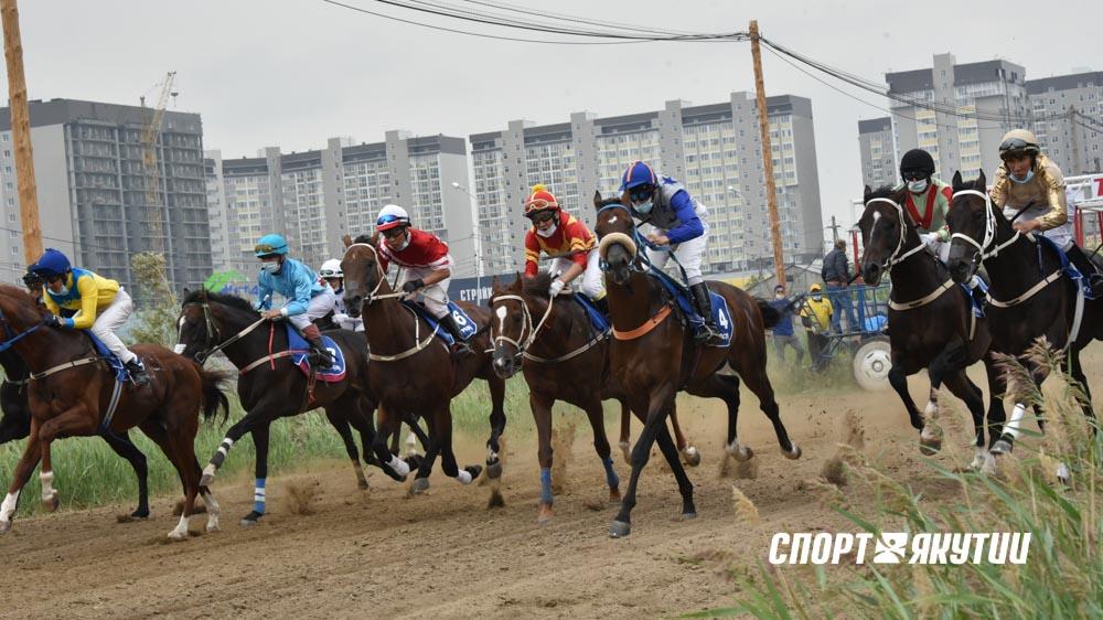 Ат уонна киһи - 2