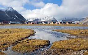 """""""Арктика гектара"""" сокуон барыла бырабыыталыстыба дьүүллэһиитигэр киирдэ"""